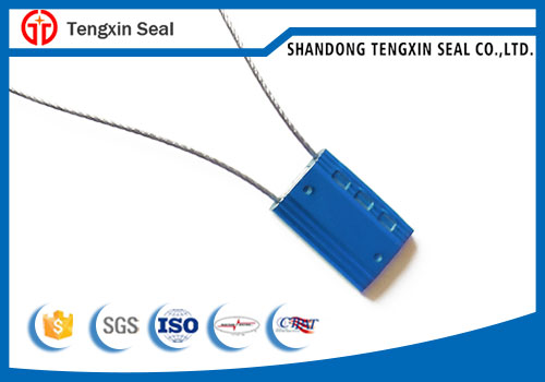 TX-CS106 disposable cable lock seals